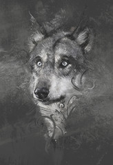 Wolf illustration. Tattoo design over grey background. textured
