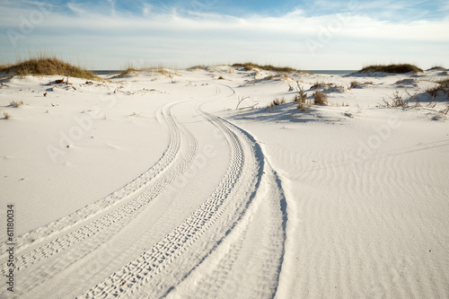 Tire Tracks in the Beach Sand Dunes