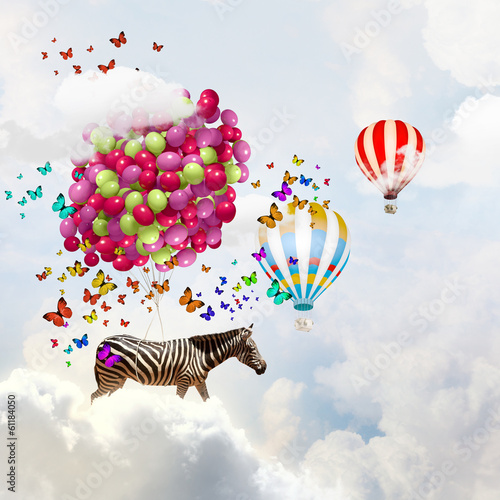 Papiers peints Zebra Flying zebra