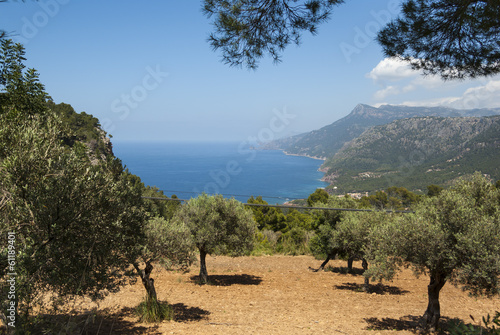 The coast of Mediterranean sea
