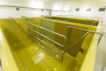 fermenting pool