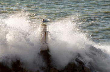 lighthouse with rough sea in Camogli