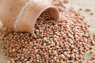 Castelluccio lentils from Umbria
