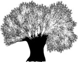 large black and white tree silhouette