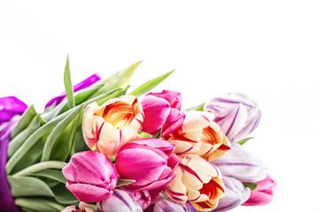 Bunte Tulpen Frühlingsstrauß