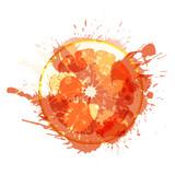 Grapefruit slice made of colorful splashes on white background