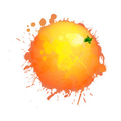 Grapefruit made of colorful splashes on white background