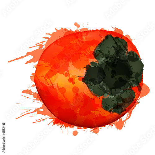 Persimmon or kaki diospyros fruit made of colorful splashes