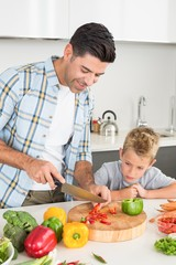 Handsome father teaching his son how to chop vegetables