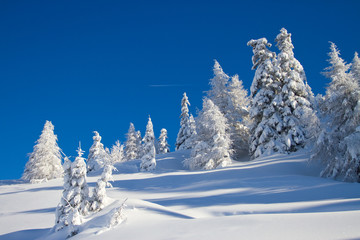 Paganella ski