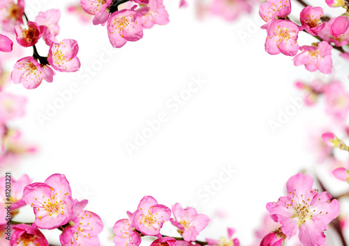 Staande foto Textures peach flowers frame