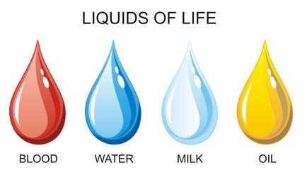 Liquids of Life