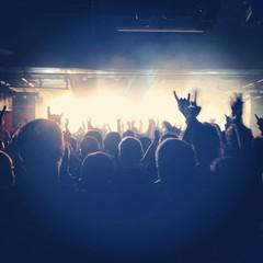 crowd at live concert