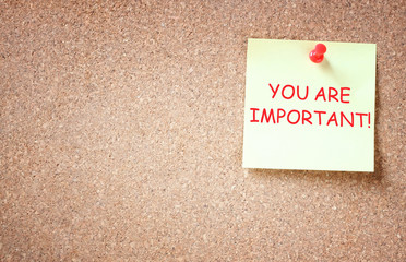 the phrase you are important written over sticky note.