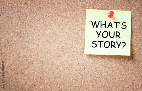 what is your story concept. sticky pinned to cork board with roo