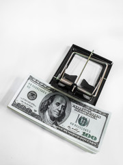 Money in a mousetrap on a white background
