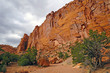 Red Cliffs in a Desert Canyon