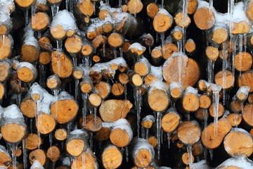 catasta di legna con ghiaccio