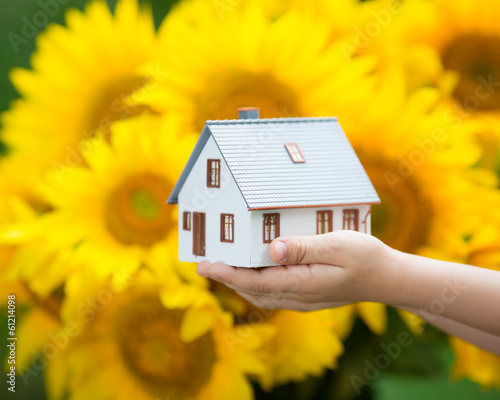 House in children`s hands