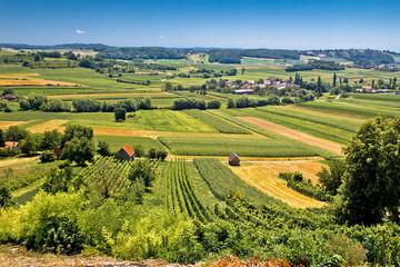 Beautiful green landscape in Kalnik vineyard area