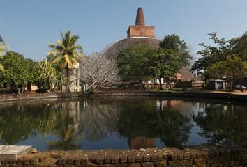 Pond in Anuradhapura