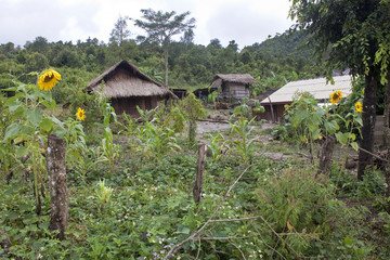 Village in Laos