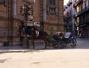 Buggy in the Quattro Canti square, Palermo