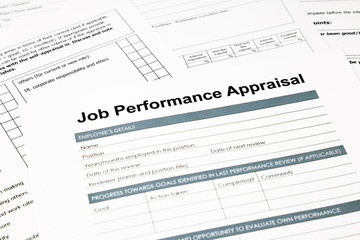 job performance appraisal form for business