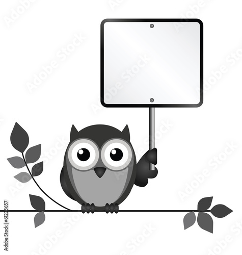 Owl with blank sign copy space for own text