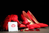 Beautiful red female shoes and retro telephone,