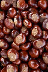 Full Frame Shot Of Conkers