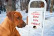 Hund und Tüten für Hundekot