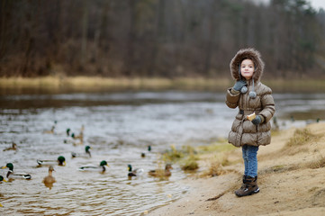 Little preschooler girl feeding ducks at autumn