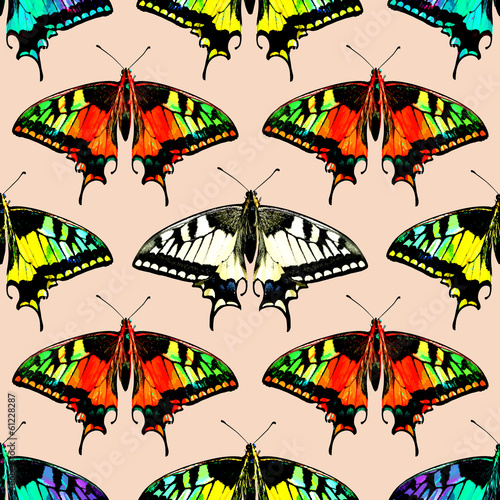 Seamless background of colorful butterflies.
