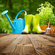 Outdoor gardening tools  on old wood table - 61233089