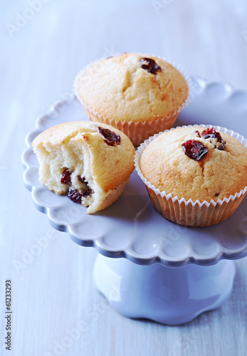 canvas print picture Cranberry Muffins