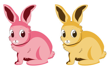 Pink and yellow rabbits