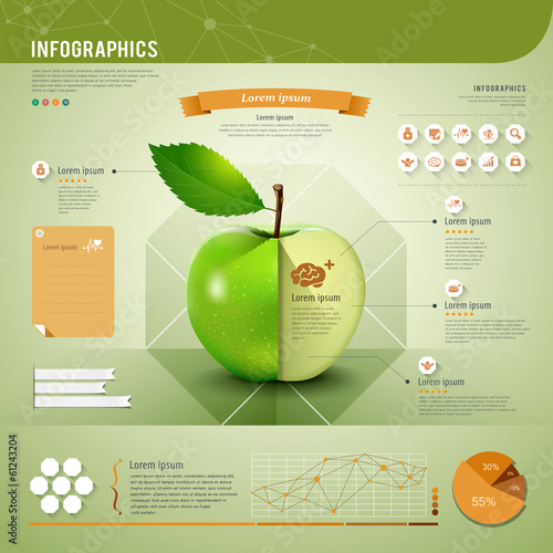 Apple infographics template, vector illustration