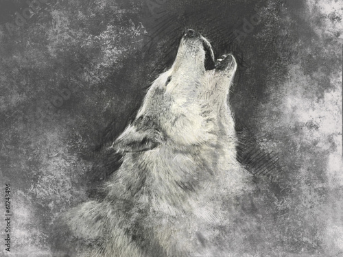 Wolf, handmade illustration on grey background - 61243496