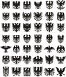 Heraldic eagles silhouettes set
