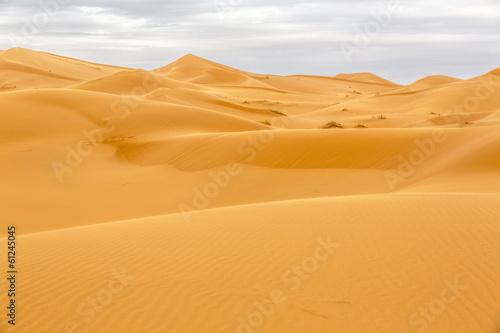 Aluminium Woestijn Erg Chebbi Wüste, Marokko