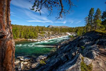 Beautiful landscape -crystal  river
