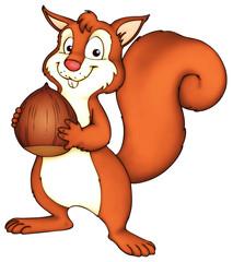 Eichhörnchen, Nuss, Haselnuss