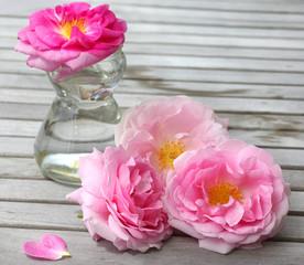 Frische Rosen aus dem Garten