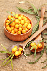 Fresh sea-buckthorn berries in wooden bowl