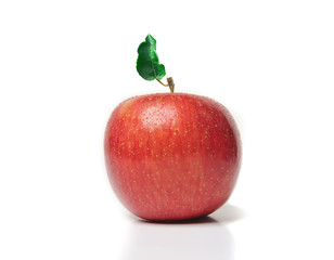 Red apple with green leaf on white