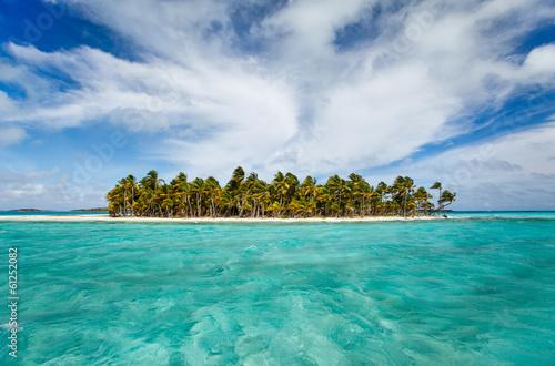 Tropical island - 61252082
