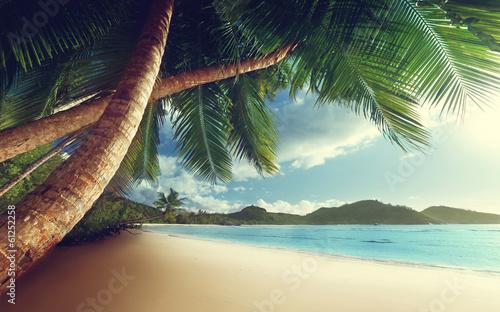 sunset on beach, Mahe island, seychelles © Iakov Kalinin