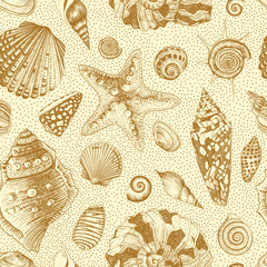 Vector seamless vintage pattern with seashells