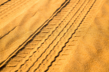 Car track in the desert